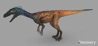Eoraptor male