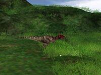 Ceratosaurus 1-1-