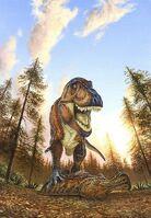 Male rex