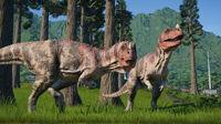 JWE Ceratosaurus pair