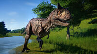 JWE Carnotaurus Stalking