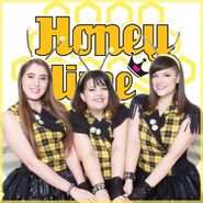 Honey Hime Bees