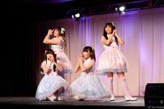 Pinku Project 2