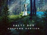 Unknown Horizon