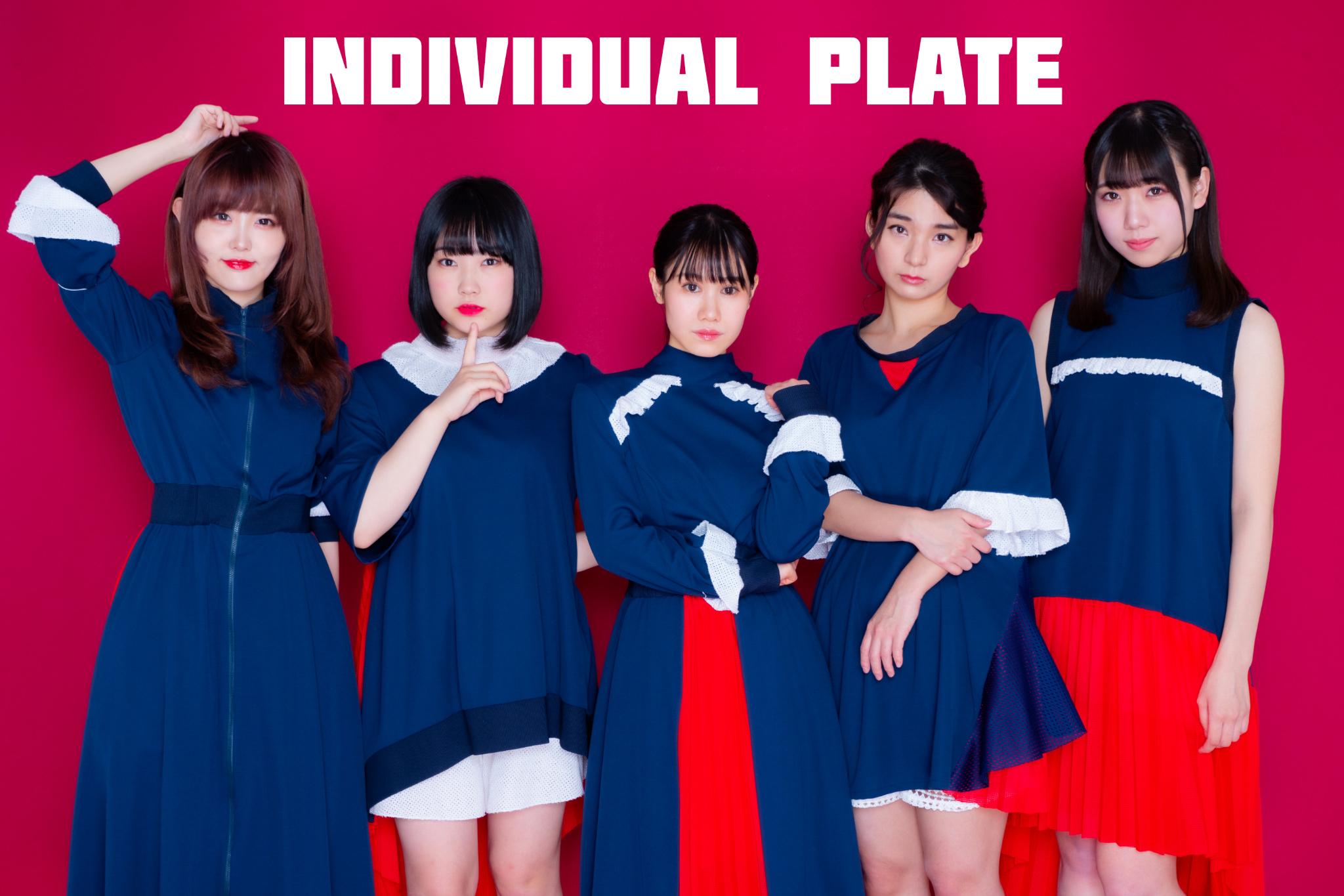 INDIVIDUAL PLATE