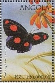 Angola 1998 Butterflies (2nd Group) d.jpg