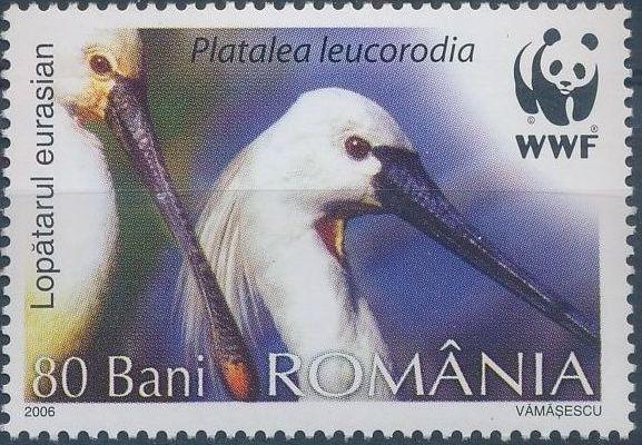 Romania 2006 WWF Eurasian Spoonbill d.jpg