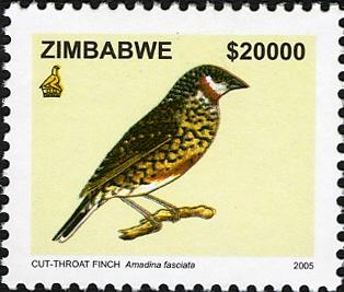Zimbabwe 2005 Birds from Zimbabwe e.jpg