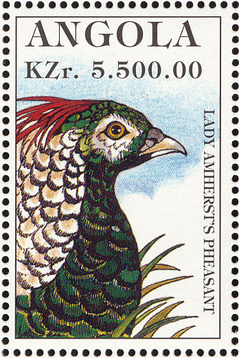 Angola 1996 Hunting Birds i.jpg