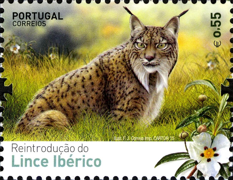 Portugal 2015 Reintroducing the Iberian Lynx into Portugal b.jpg