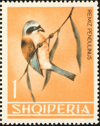 Albania 1964 Birds b.jpg