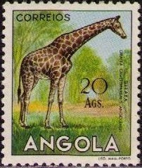 Angola 1953 Animals from Angola t.jpg