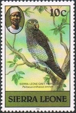Sierra Leone 1982 Birds from 1980 Imprint 1982 f.jpg