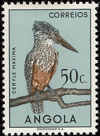 Angola 1951 Birds from Angola e.jpg