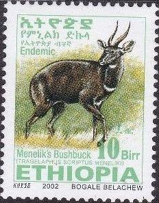 Ethiopia 2002 Menelik's Bushbuck x.jpg