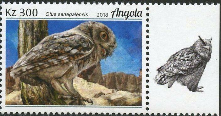 Angola 2018 Wildlife of Angola - Owls b.jpg