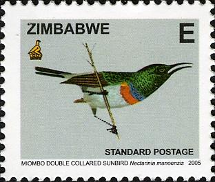 Zimbabwe 2005 Birds from Zimbabwe g.jpg