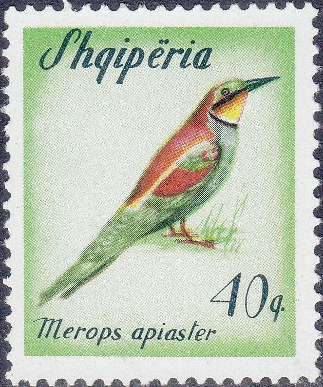 Albania 1965 Migratory Birds e.jpg