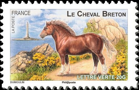 France 2013 Draft Horses of our Regions