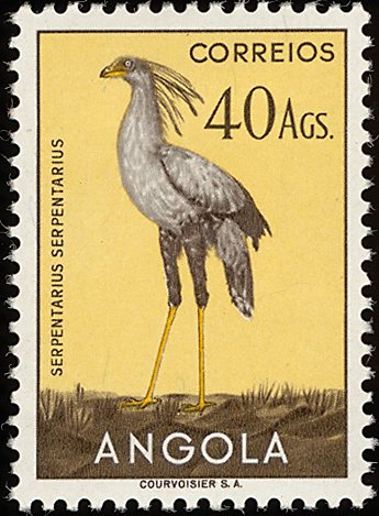 Angola 1951 Birds from Angola w.jpg