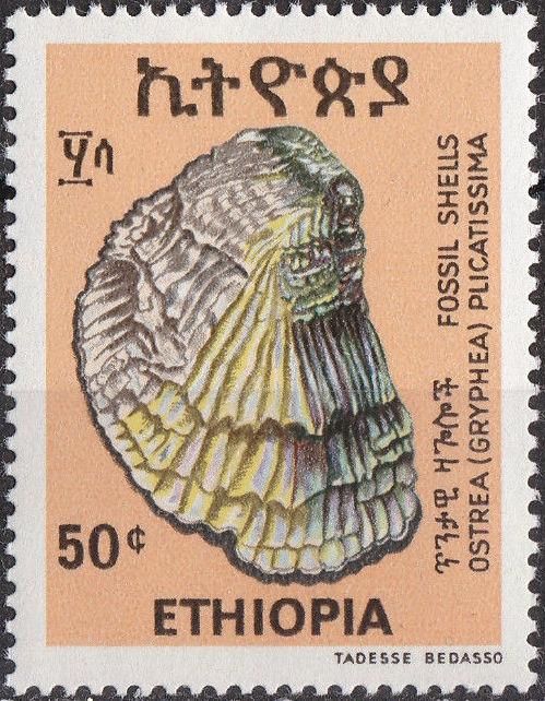 Ethiopia 1977 Fossil Shells d.jpg