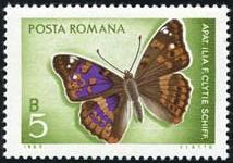 Romania 1969 Butterflies