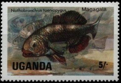 Uganda 1985 Freshwater Fishes