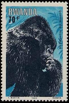 Rwanda 1983 Mountain Gorilla h.jpg