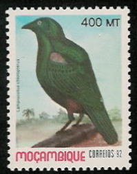 Mozambique 1992 Birds of Moçambique (4th Issue) d.jpg