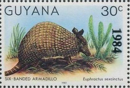 Guyana 1984 Wildlife (Overprinted 1984) g.jpg