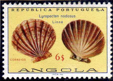 Angola 1974 Sea Shells m.jpg