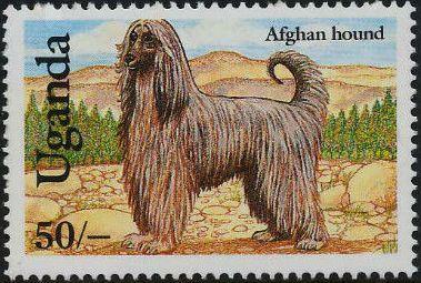 Uganda 1993 Dogs