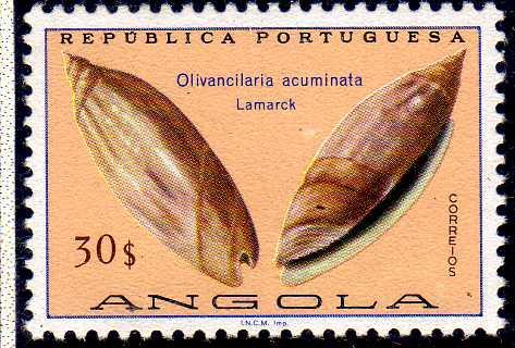 Angola 1974 Sea Shells q.jpg