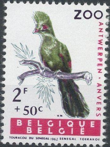 Belgium 1962 Birds of Antwerp Zoo c.jpg