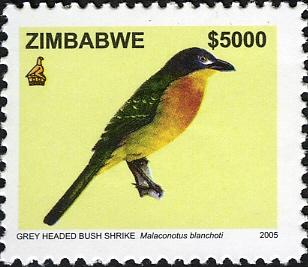 Zimbabwe 2005 Birds from Zimbabwe b.jpg