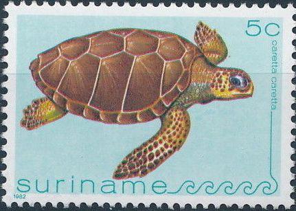 Surinam 1982 Turtles