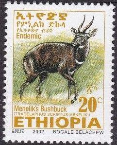 Ethiopia 2002 Menelik's Bushbuck d.jpg