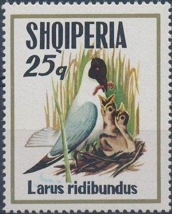 Albania 1973 Sea Birds d.jpg