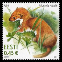 Estonia 2013 Estonian Fauna – Weasel