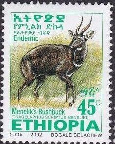 Ethiopia 2002 Menelik's Bushbuck i.jpg