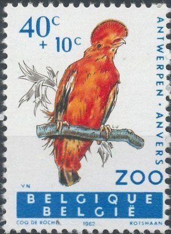 Belgium 1962 Birds of Antwerp Zoo