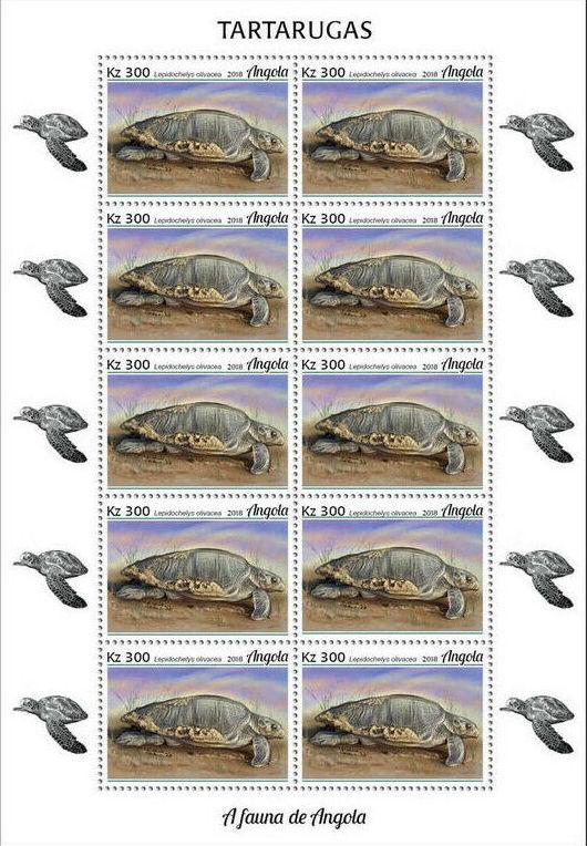 Angola 2018 Wildlife of Angola - Turtles Sb.jpg