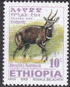 Ethiopia 2002 Menelik's Bushbuck b.jpg