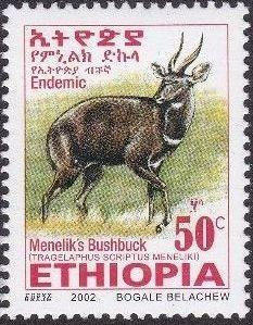 Ethiopia 2002 Menelik's Bushbuck j.jpg