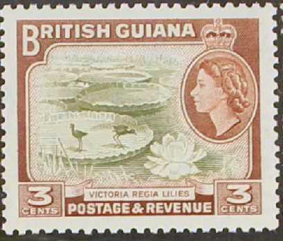 British Guiana 1954 Elizabeth II and Local Scenes c.jpg