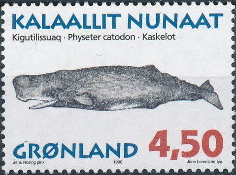 Greenland 1996 Whales d.jpg