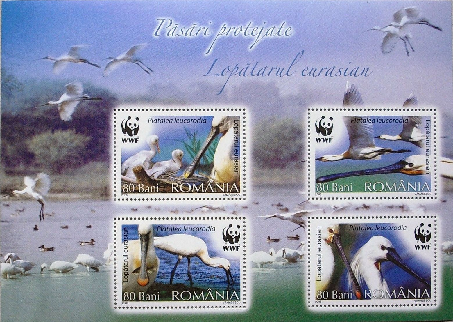 Romania 2006 WWF Eurasian Spoonbill h.jpg