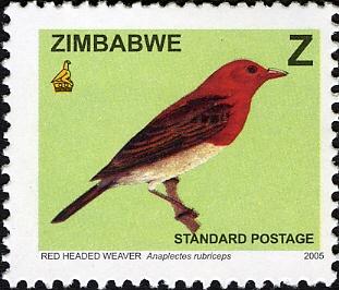 Zimbabwe 2005 Birds from Zimbabwe c.jpg