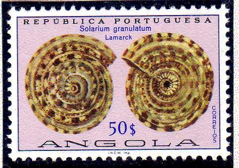 Angola 1974 Sea Shells t.jpg