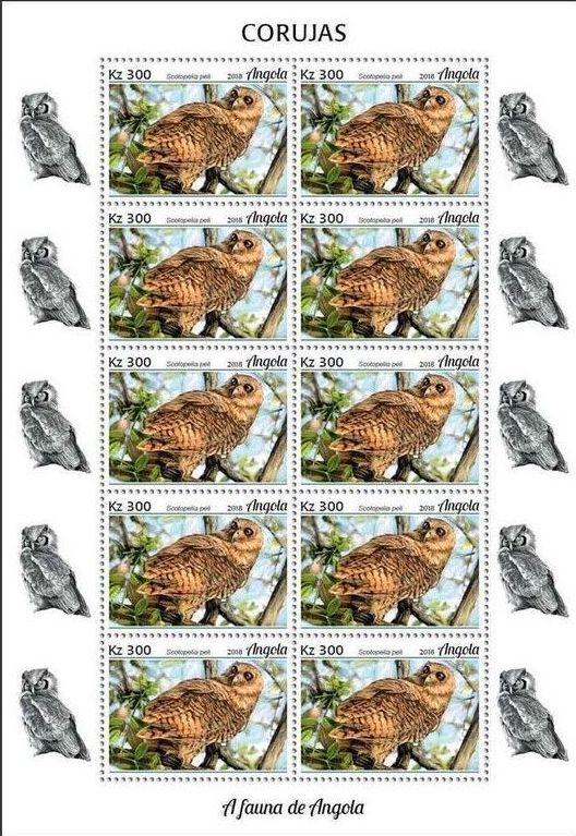 Angola 2018 Wildlife of Angola - Owls Sa.jpg